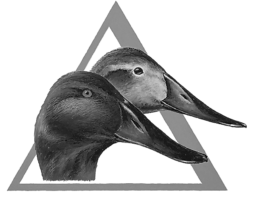 Delta Waterfowl provides conservation efforts in North America, and hired CVP Productions to create professional, high-quality promotional videos .